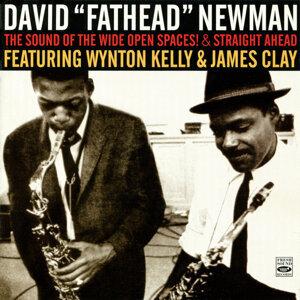 David Fathead Newman 歌手頭像
