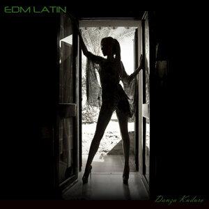 EDM Latin 歌手頭像