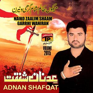 Adnan Shafqat 歌手頭像