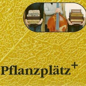 Pflanzplätz 歌手頭像