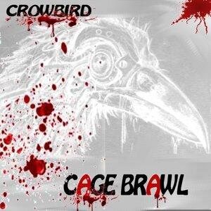 Crowbird 歌手頭像