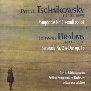 Berliner Sinfonieorchester アーティスト写真