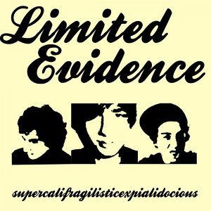 Limited Evidence 歌手頭像