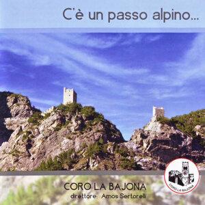 Coro La Bajona, Amos Sartorelli 歌手頭像