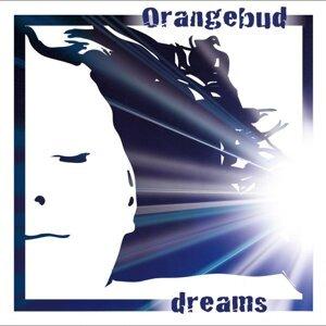 Orangebud 歌手頭像