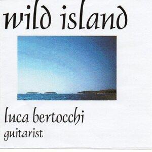 Luca Bertocchi 歌手頭像