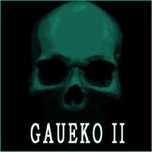 Gaueko 歌手頭像