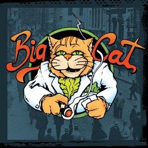 Big Cat 歌手頭像
