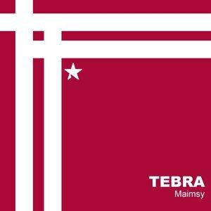 Tebra 歌手頭像