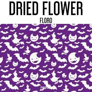 Dried Flower 歌手頭像