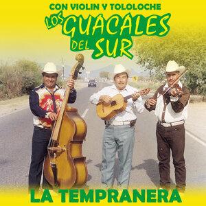 Los Guacales del Sur 歌手頭像