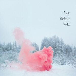 The Bright Wild 歌手頭像