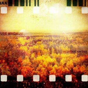 Use Magnum 歌手頭像