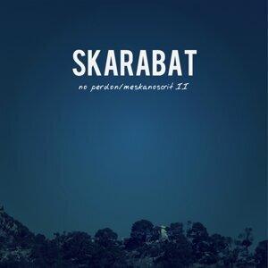 Skarabat 歌手頭像