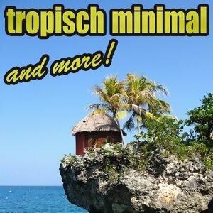 Tropisch Minimal & More 歌手頭像