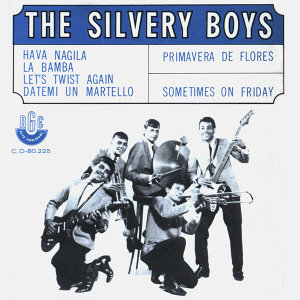 The Silvery Boys 歌手頭像