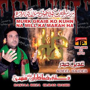 Adeel Haider 歌手頭像