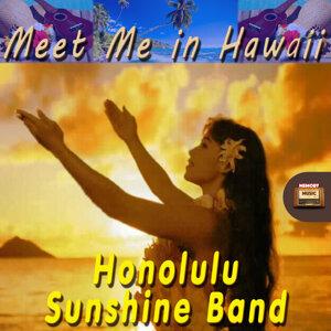 Honolulu-Sunshine-Band 歌手頭像