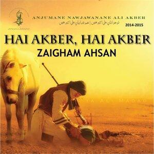 Zaigham Ahsan 歌手頭像