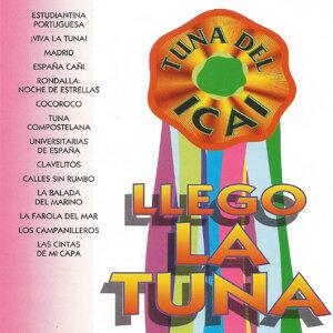 Tuna del Icai 歌手頭像