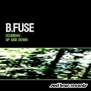 B.Fuse 歌手頭像