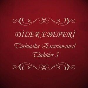 Diler Ebeperi 歌手頭像