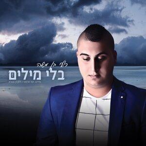 Roy Ben Moshe 歌手頭像