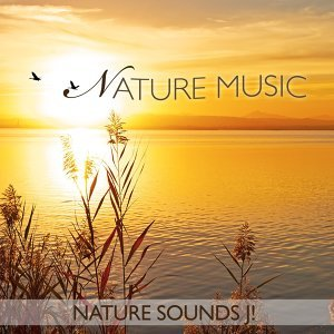 Nature Sounds J! 歌手頭像