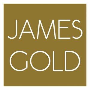 James Gold 歌手頭像