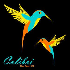 Colibri 歌手頭像