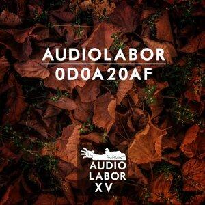 Audiolabor 歌手頭像