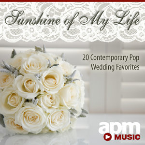 101 Strings Orchestra & APM Wedding Ensemble 歌手頭像