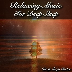 Deep Sleep Master 歌手頭像
