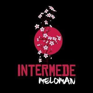 Meloman 歌手頭像