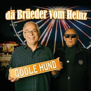 dä Brüeder vom Heinz 歌手頭像