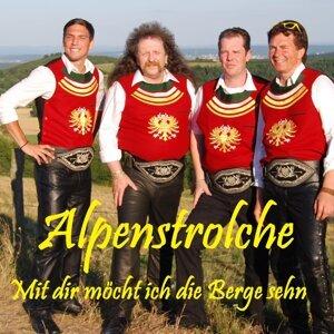 Alpenstrolche 歌手頭像