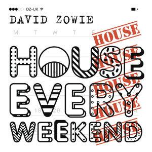 David Zowie 歌手頭像