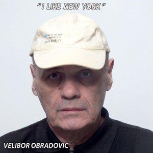 Velibor Obradovic 歌手頭像