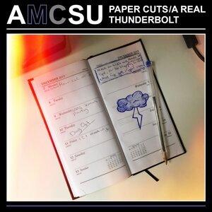 AMCSU 歌手頭像
