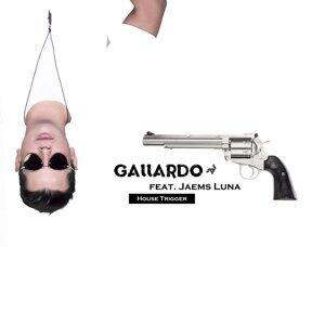 Gallardo アーティスト写真