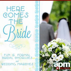 APM Wedding Players 歌手頭像