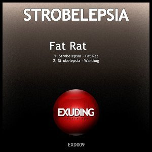 Strobelepsia 歌手頭像