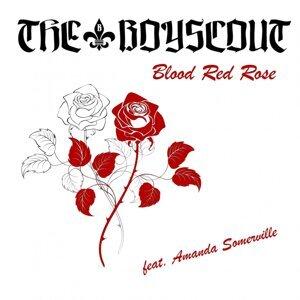 The Boyscout feat. Amanda Somerville 歌手頭像