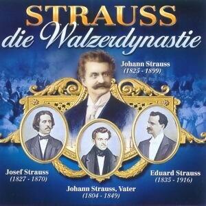 Strauss - Die Walzerdynastie アーティスト写真