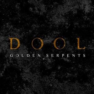 Dool 歌手頭像