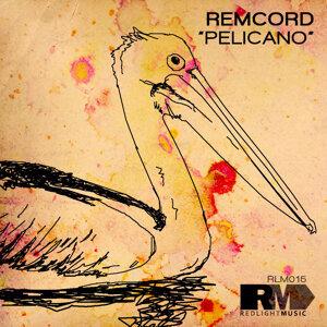 Remcord 歌手頭像