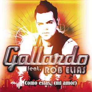 Gallardo Feat. Rob Elias 歌手頭像