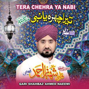 Qari Shahbaz Ahmed Naeemi 歌手頭像