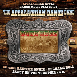 The Appalachian Dance Band 歌手頭像