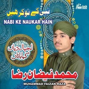 Muhammad Faizan Raza 歌手頭像